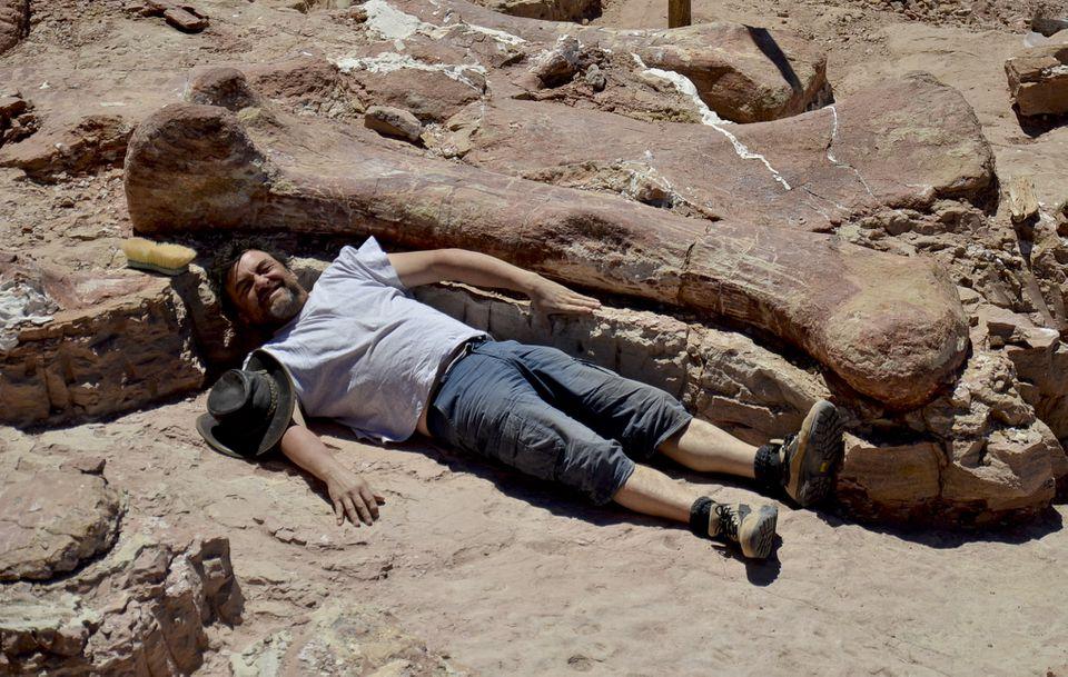Paleontologist Jose Ignacio Canudo showed the length of a fossilized femur from a  dinosaur found in Argentina.