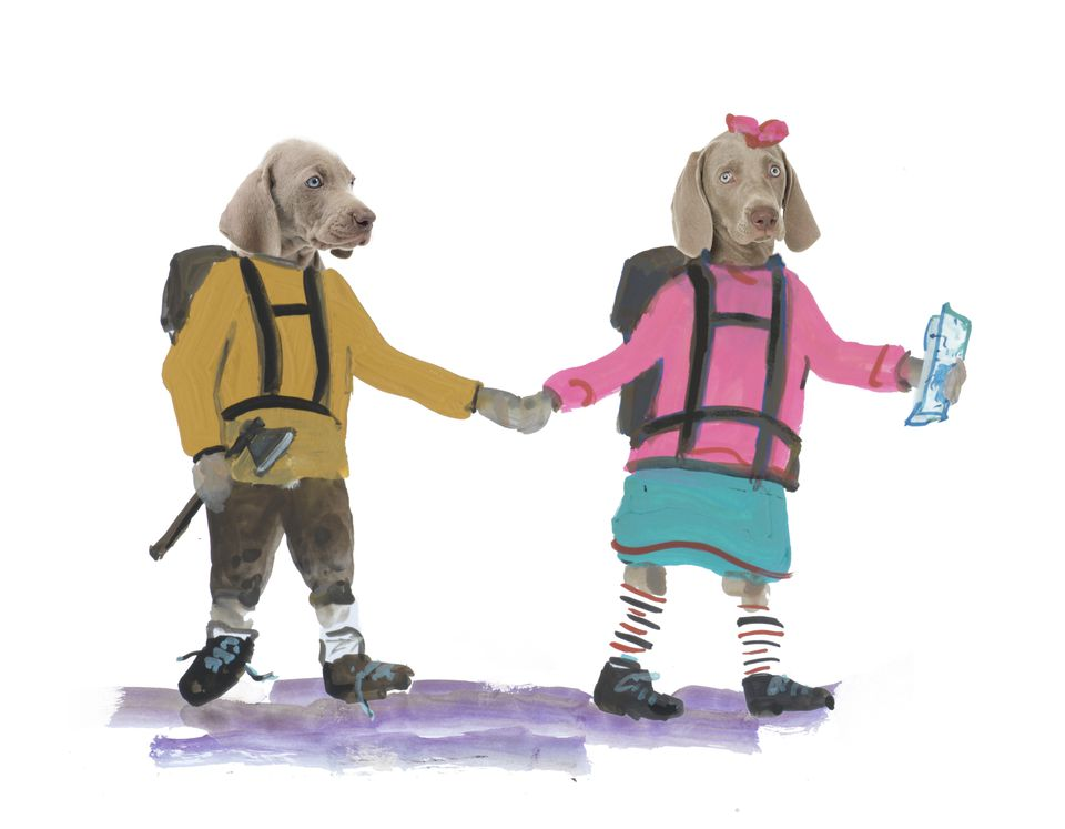 "An illustration from William Wegman's new children's book ""Flo & Wendell Explore."""