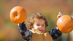One way to enjoy the fall views and keep the kids happy? Head to the pumpkin patch.