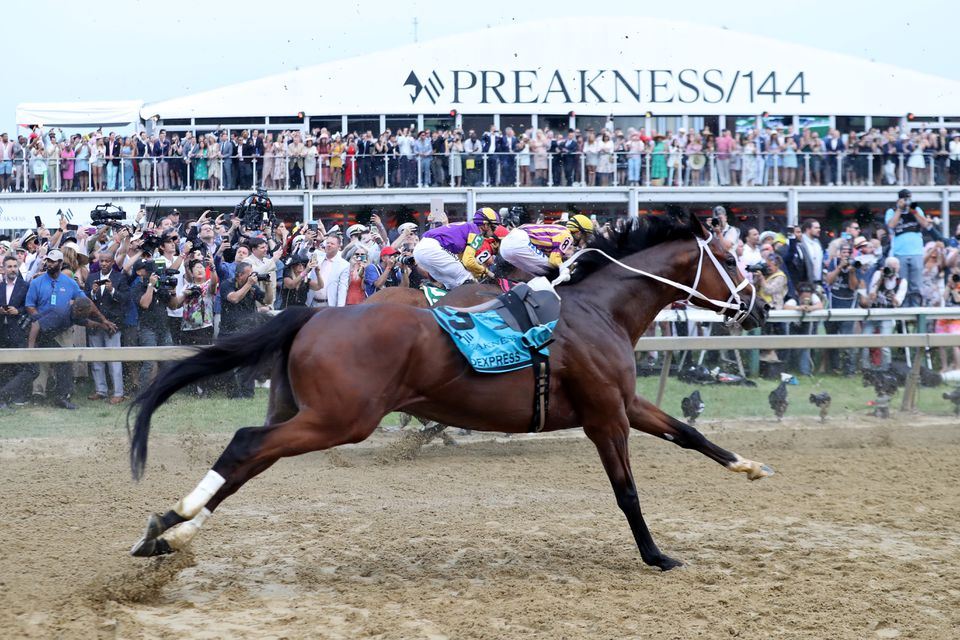 A Jockey Was Tossed Off His Horse At The Preakness