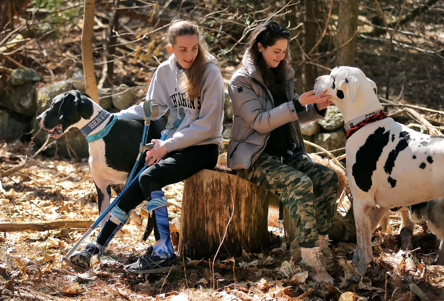Left to right, Fiona Howard and Alyssa Berkovitz rested during a walk with their service dogs, Elvis and Kernel.
