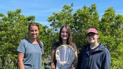 University of Rhode Island graduate students Casey Johnson, Elizabeth Varkonyi, and Julia Viera led the Rhode Island Bombus Survey to locate 11 species of bumblebees in Rhode Island. They have found six, including the first American bumblebee in more than a decade.