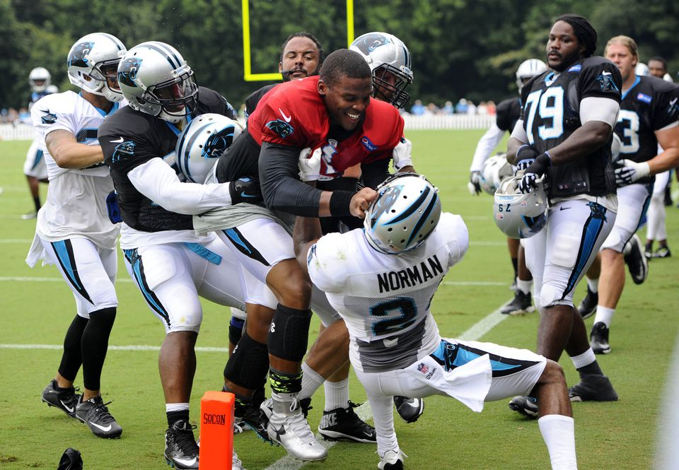 This skirmish between Panthers quarterback Cam Newton (red jersey) and cornerback Josh Norman was just one example of the brawling that has permeated NFL training camps and joint practices.