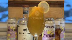 Let the Fun Bee-Gin by Springdale Beer Co. and Bully Boy Distillers.