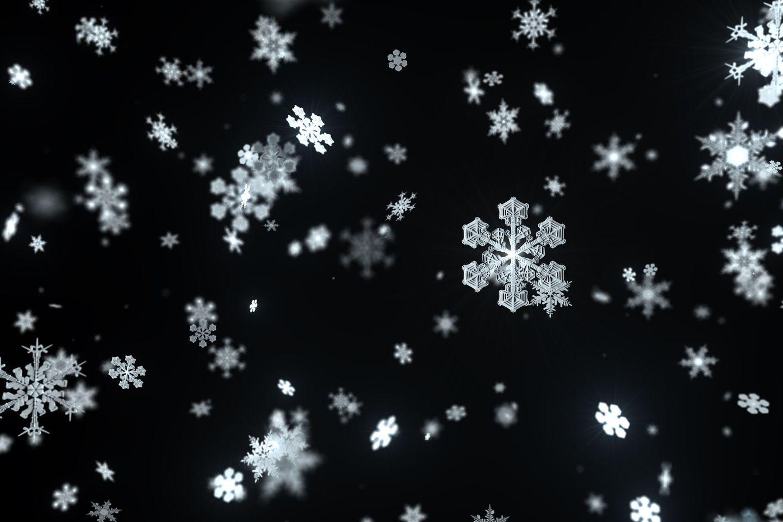 Some 'snowflakes' can take the heat - The Boston Globe