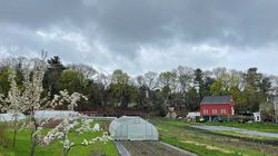 Newton Community Farm will reopen to the public June 1.