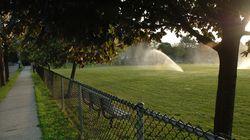Sprinklers watering the baseball field at Albemarle Park in Newton.