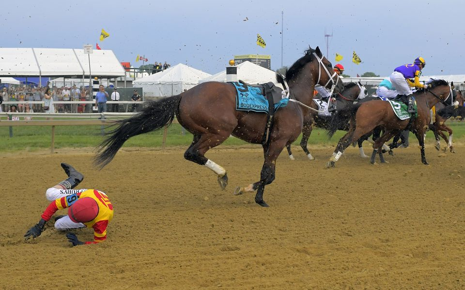 Jockeyless horse steals the show at the Preakness