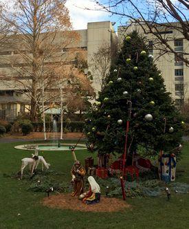 Prouty Garden at Boston Children's Hospital.