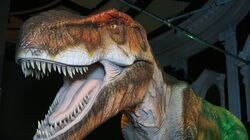 The Connecticut Science Center in Hartford has a massive exhibit, Dinosaurs Around the World.