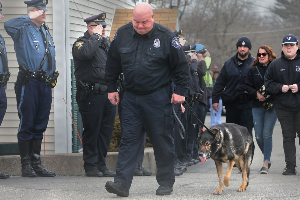After Bruin was diagnosed with terminal cancer a few weeks ago, Saugus Police Officer Timothy Fawcett decided to give him a peaceful death Thursday.