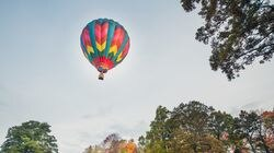 A hot air balloon, operated by Berkshire Balloons in Connecticut, drifts just over the treetops.