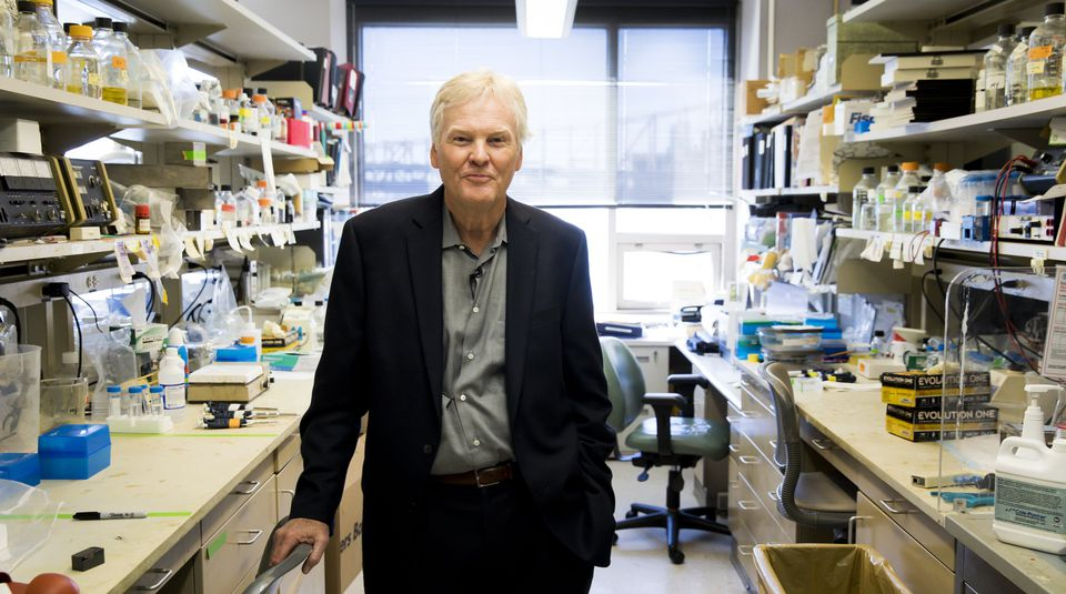 Michael W. Young, Ph.D., one of three winners of the 2017 Nobel prize for physiology or medicine, posed for a portrait in his lab in New York on Monday.