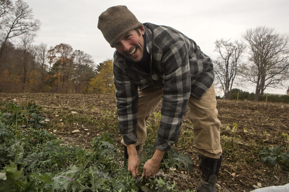 Dylan Frazier is one of Boston Area Gleaner's coordinators.