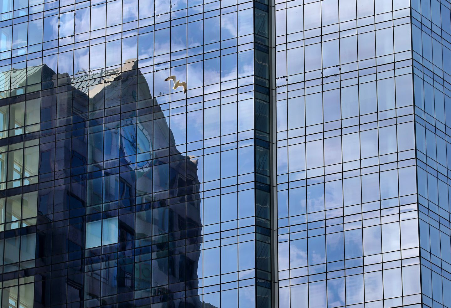 Downtown buildings reflected on the side of Millennium Tower.