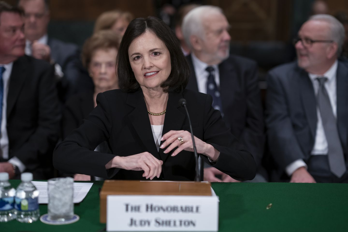 """Judy Shelton, one of President Trump's nominees for the Federal Reserve, said she would bring """"intellectual diversity"""" to the Fed."""