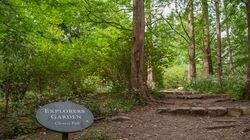 A path in the Arnold Arboretum invites exploration.