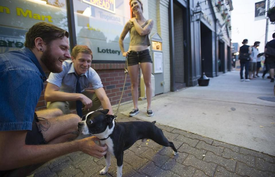 Hipsters are amassing in Somerville, which claims to be the only city in the country that conducts a happiness survey.