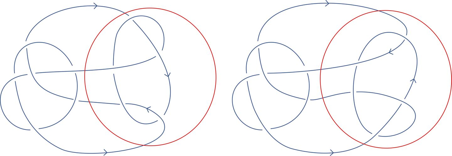 The famous Conway knot, at left, and a similar one,               known as the Kinoshita-Terasaka knot. By flipping the area               within the red circles, one knot can be transformed into               the other.