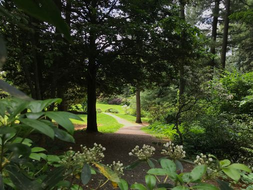 5 leafy escapes out of Boston that are beautiful and accessible - The Boston Globe