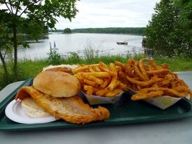 A haddock fillet dwarfs its bun, with fries and onion rings.
