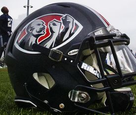 Brawlers helmets sport the team's two-fisted logo.