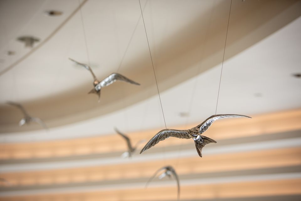 One hundred aluminum-cast California least terns were suspended inside the lobby of Lucile Packard Children's Hospital.
