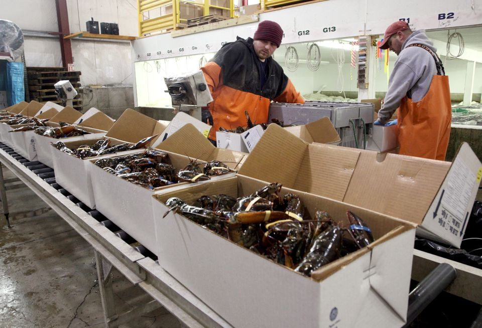 Nick Keefer (left) packed lobsters bound for China with a co-worker at Maine Coast in York, Maine, in 2015.
